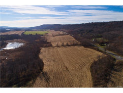 Photo of Route 22, call Listing Agent, NY 12502 (MLS # 4750311)