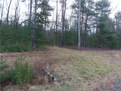 Photo of 1474 Lot#5 Route 42, Forestburgh, NY 12777 (MLS # 4751138)
