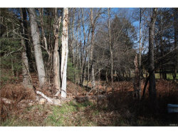 Photo of Cantrell Road, Monticello, NY 12701 (MLS # 4751365)