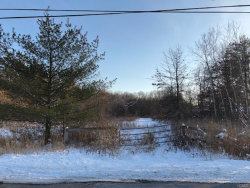 Photo of Red Mill Road, Pine Bush, NY 12566 (MLS # 4802399)