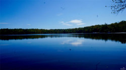 Photo of 335 Woodstone Trail, White Lake, NY 12786 (MLS # 4802429)
