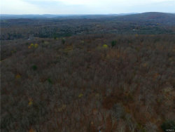 Photo of St Hwy 42, Fallsburg, NY 12733 (MLS # 4802735)