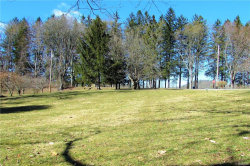 Photo of Lakeside Drive, Pawling, NY 12564 (MLS # 4807473)