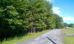 Photo of State Route 55, Neversink, NY 12765 (MLS # 4809163)
