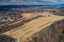 Photo of 28 Yellow City Road, Amenia, NY 12501 (MLS # 4815247)