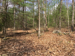 Photo of (41) Eldred-Yulan Road, Eldred, NY 12732 (MLS # 4819139)