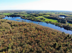 Photo of 107 acres Darling Road, Bethel, NY 12720 (MLS # 4821682)