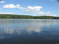 Photo of 33 Summer Lake Drive, Highland Lake, NY 12743 (MLS # 4828058)