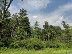 Photo of Route 42, Forestburgh, NY 12777 (MLS # 4828517)