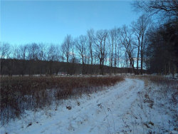 Photo of Lot 7 Mcguire Road, Neversink, NY 12765 (MLS # 4830192)
