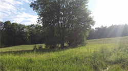Photo of Segar & Rosenberg Road, Bethel, NY 12720 (MLS # 4832327)