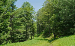 Photo of Wegman Road, Roscoe, NY 12776 (MLS # 4833652)