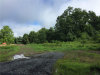 Photo of Borden Road, Montgomery, NY 12586 (MLS # 4837113)