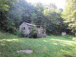 Photo of Baxter Mountain Road, Roscoe, NY 13755 (MLS # 4837265)