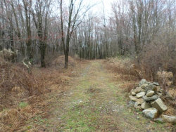Photo of LOT#2 GREENVILLE Turnpike, Port Jervis, NY 12771 (MLS # 483750)