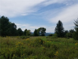 Photo of Phillips Mein Road, call Listing Agent, NY 12149 (MLS # 4837832)
