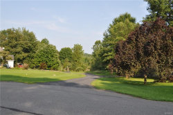 Photo of 11 Hillside Lane, Plattekill, NY 12568 (MLS # 4838677)