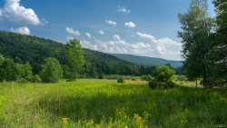 Photo of 0 County Hwy 42, call Listing Agent, NY 12116 (MLS # 4839016)