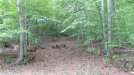 Photo of Mountain View, Hopewell Junction, NY 12533 (MLS # 4839429)