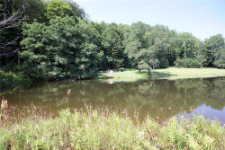 Photo of Route 97, call Listing Agent, NY 12760 (MLS # 4839647)