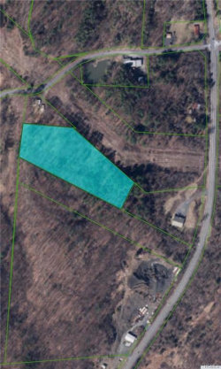 Photo of 9W Route, Athens, NY 12015 (MLS # 4854493)