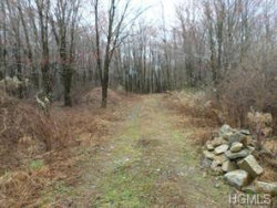 Photo of Lot # 2 Greenville Turnpike, Port Jervis, NY 12771 (MLS # 4900143)