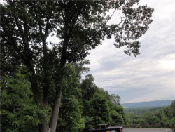 Photo of Forest View Drive, Wappingers Falls, NY 12590 (MLS # 4902703)
