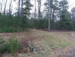 Photo of 1474 Lot#5 Route 42, Forestburgh, NY 12777 (MLS # 4903382)