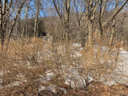 Photo of 315 Call Hollow Road, Stony Point, NY 10980 (MLS # 4914768)