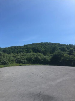 Photo of County Hwy 13, Chester, NY 10918 (MLS # 4963762)