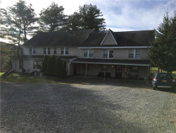 Photo of 751 State Route 42, Sparrowbush, NY 12780 (MLS # 4806869)