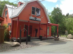 Photo of 5 Austin Road, Barryville, NY 12719 (MLS # 4710627)