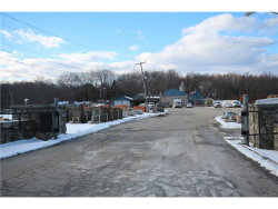 Photo of 301 Route 52, Carmel, NY 10512 (MLS # 4714791)