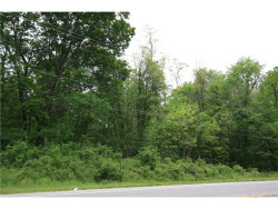 Photo of Ss State Route 17k Ss, Montgomery, NY 12549 (MLS # 4723414)
