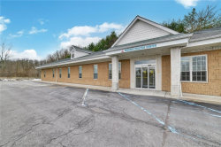 Photo of 33 17M Route, Harriman, NY 10950 (MLS # 4815205)