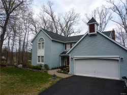 Photo of 22 Dogwood Drive, Central Valley, NY 10917 (MLS # 4750948)