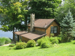 Photo of 1682 Route 292, Holmes, NY 12531 (MLS # 4853023)