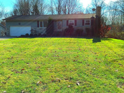 Photo of 3997 Timber Ln, Youngstown, OH 44511 (MLS # 3674797)