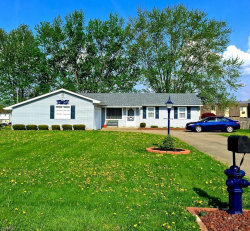 Photo of 2260 Sprucewood Ct, Youngstown, OH 44515 (MLS # 3709172)