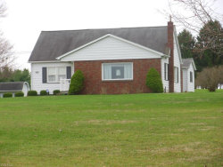 Photo of 3395 East South Range Rd, New Springfield, OH 44443 (MLS # 3714408)