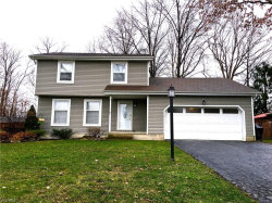 Photo of 3644 Maple Springs Dr, Canfield, OH 44406 (MLS # 3766535)