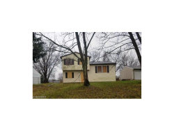 Photo of 9936 Green Dr, Windham, OH 44288 (MLS # 3870380)