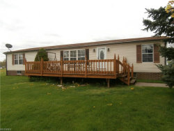Photo of 9980 Bright Dr, Windham, OH 44288 (MLS # 3896537)
