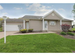 Photo of 603 South Raccoon Rd, Unit 16, Austintown, OH 44515 (MLS # 3897501)