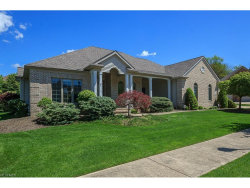 Photo of 379 East Kilbridge Dr, Highland Heights, OH 44143 (MLS # 3899073)