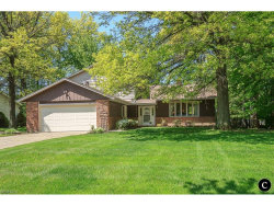 Photo of 584 Rutland Dr, Highland Heights, OH 44143 (MLS # 3903477)