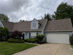 Photo of 2785 Tinkers Ln, Unit 13E, Twinsburg, OH 44087 (MLS # 3909411)