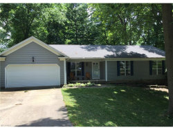 Photo of 1168 Brookpoint Dr, Macedonia, OH 44056 (MLS # 3913272)