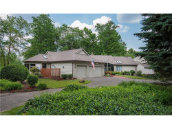 Photo of 441 Long Dr, Chagrin Falls, OH 44023 (MLS # 3913463)