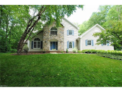 Photo of 8698 Chase Dr, Chagrin Falls, OH 44023 (MLS # 3915818)